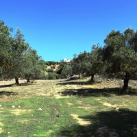 Land plot in Greece, Crete, Chania