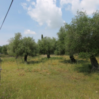 Land plot in Greece, Ionian Islands
