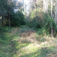 Land plot in Greece, Ionian Islands, 4722 sq.m.