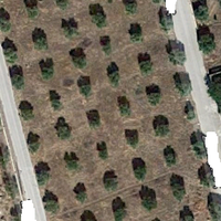 Land plot in Greece, Peloponnese, Kori