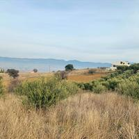 Land plot in Greece, 580 sq.m.